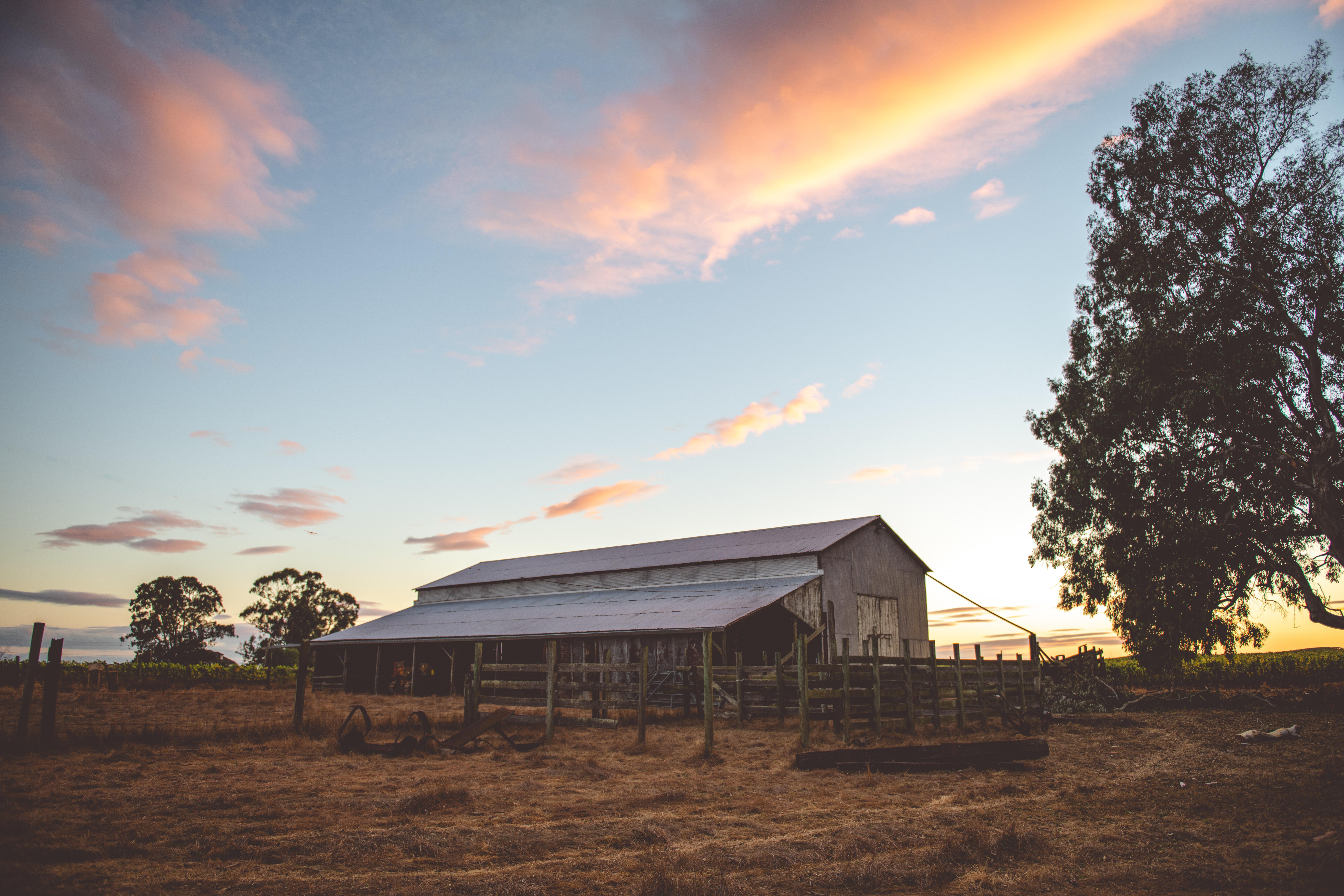 Stewart Ranch - HR (Matte Filter)-130