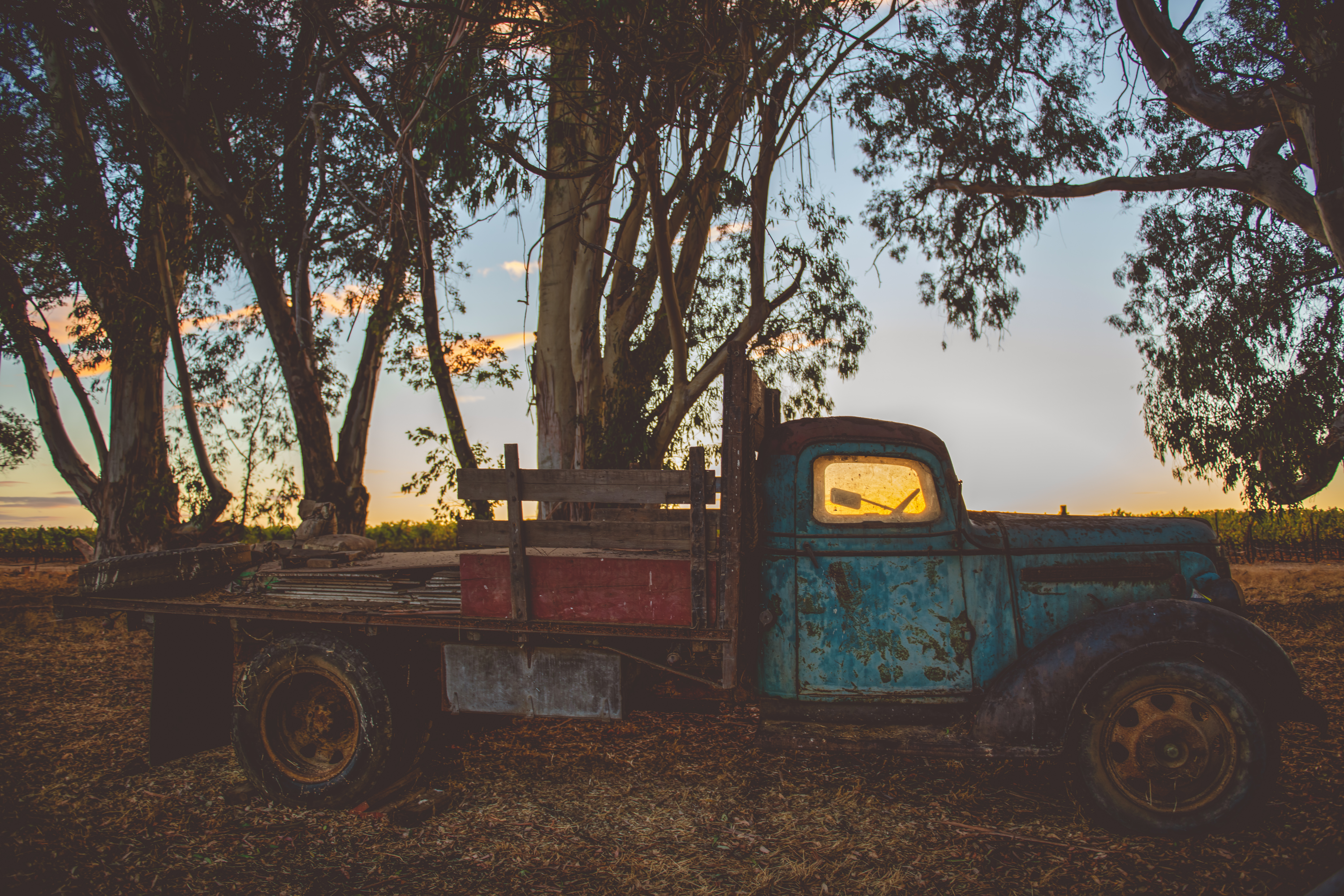 Stewart Ranch - HR (Matte Filter)-132
