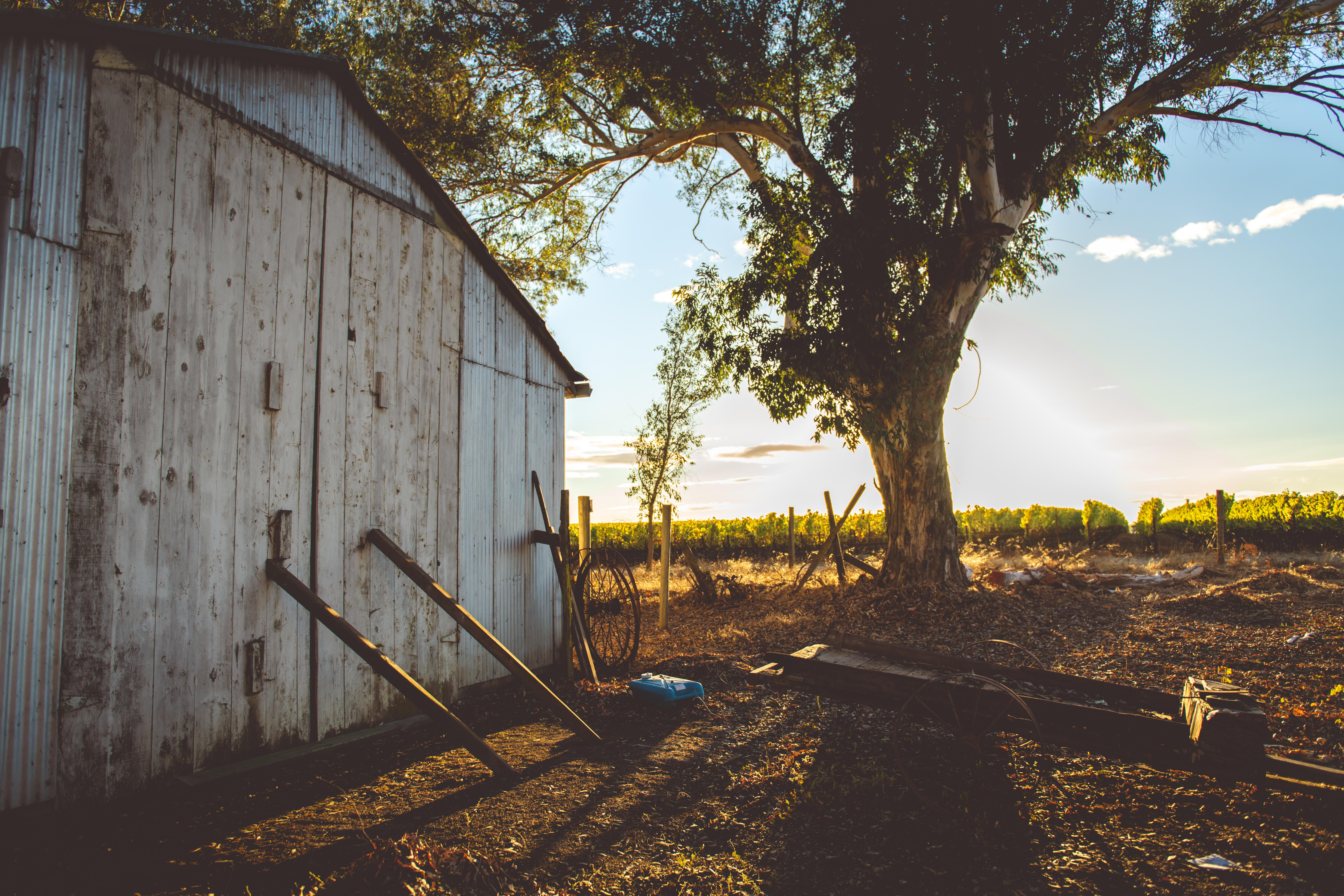 Stewart Ranch - HR (Matte Filter)-31